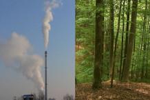 Les effets bénéfiques du CO2
